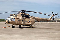 Helicopter-DataBase Photo ID:15093 Mi-17 Vertol Systems Company Inc N25299 cn:108M01