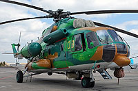 Helicopter-DataBase Photo ID:10597 Mi-171E Kazakhstan Ministry of Interior 08 yellow cn:171E00398124708U