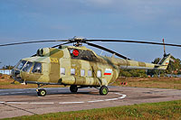 Helicopter-DataBase Photo ID:8599 Mi-8PS Russian Air Force 06 yellow cn:8165