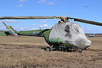 Helicopter-DataBase Photo ID:16610 PZL Mi-2 DOSAAF Rossii RF-00961 cn:549740056