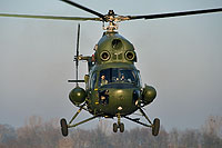 Helicopter-DataBase Photo ID:16525 PZL Mi-2D 56th Army Aviation Base 5243 cn:515243077